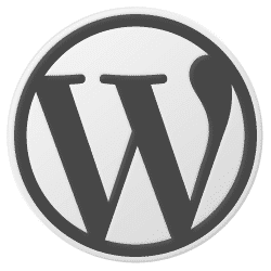 Using WordPress for a business website