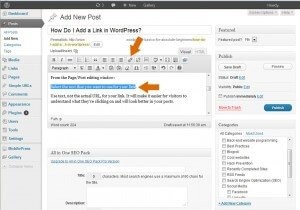 Add a link to your WordPress page or post