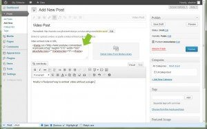 New Video Posts in WordPress 3.6